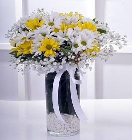 5 no vazoda çiçek