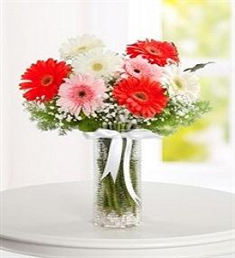 7 no vazoda çiçek