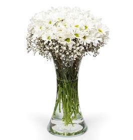 2 no vazoda çiçek