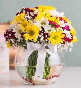 6 no vazoda çiçek